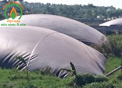 be biogas hdpe (1)