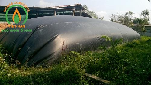 be biogas hdpe (2)