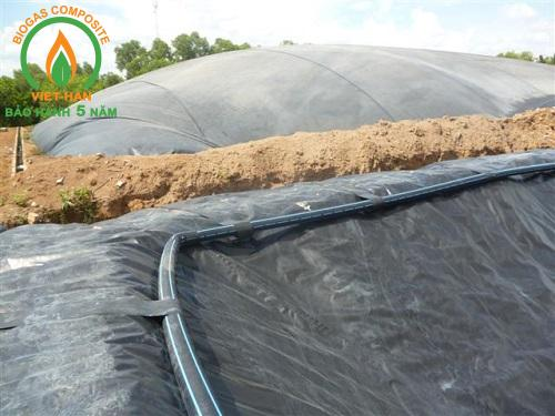be biogas hdpe (3)