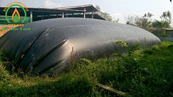 be biogas hdpe