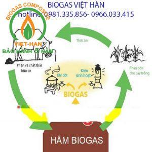 mo hinh vacb (3)