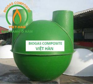 be biogas composite (1)