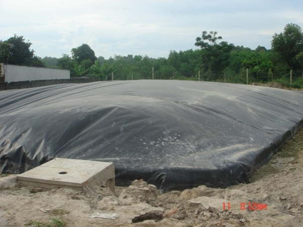 ham biogas trong chan nuoi (2)