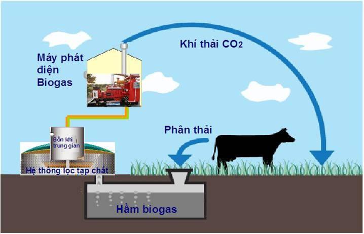 đặc điểm của khí biogas